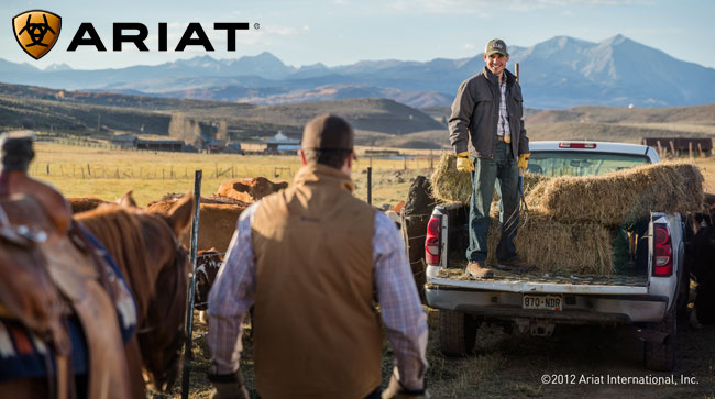 Ariat Tek Mens Apparel