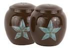 Rustic Barn Star Salt & Pepper Shaker Set