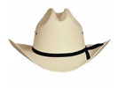 Bullhide Buddy Straw Hat