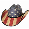 Bullhide Star Spangled 20X Straw Hat