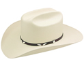 Stetson Eagle Pass 10X Straw Hat