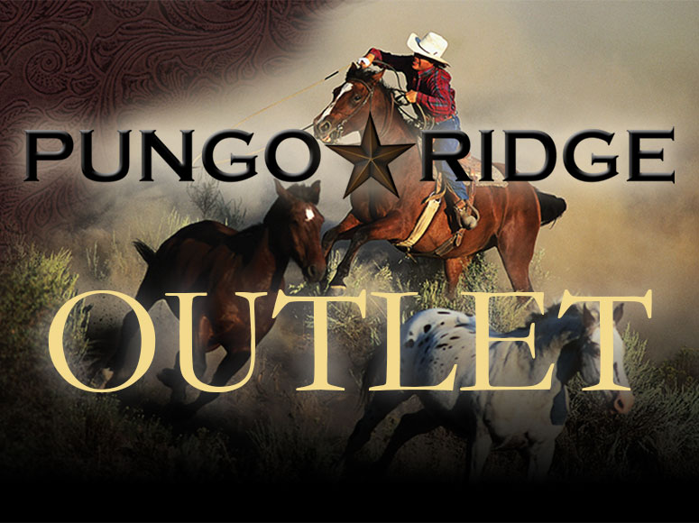 Reach for the Stars - Shop the Pungo Ridge Outlet & Save 50%!