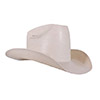 American Hat Co 601 PRCA Straw Hat