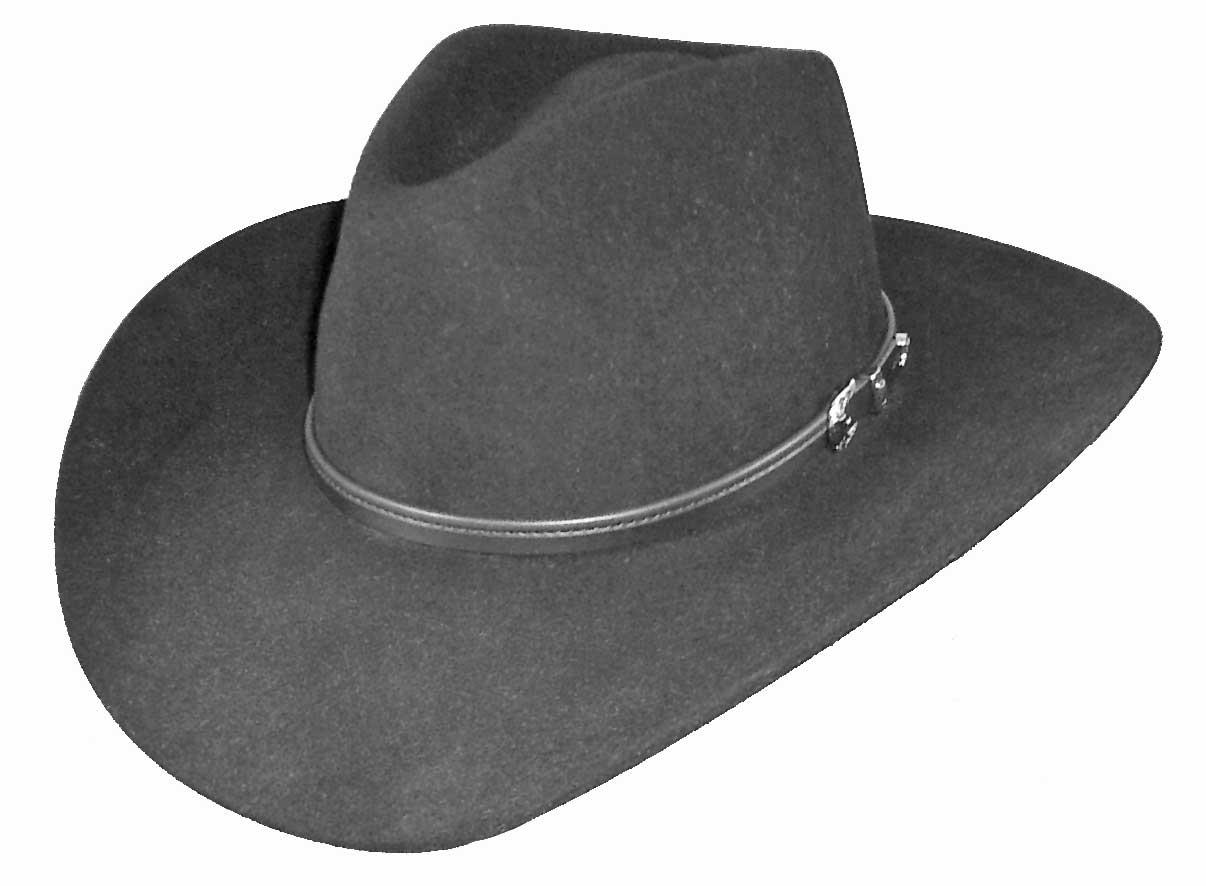 Stetson Seneca 4X Buffalo Fur Hat - Granite. Tap to expand 7d39654aed17